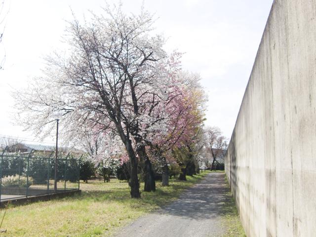 川越少年刑務所8