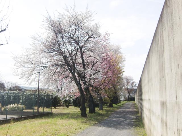 川越少年刑務所9
