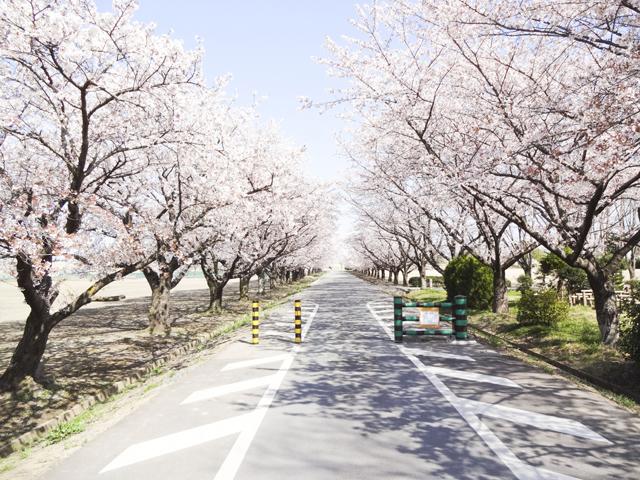渡良瀬運動公園3
