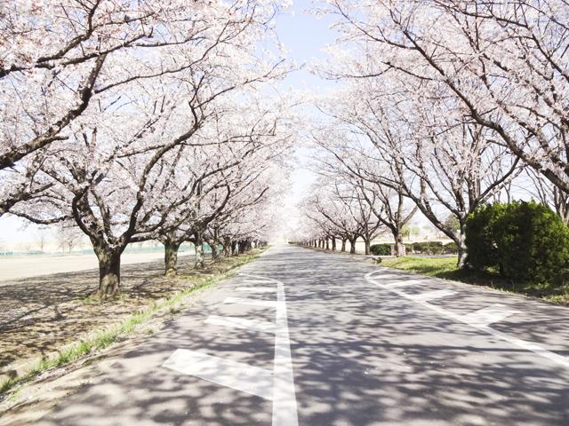 渡良瀬運動公園8