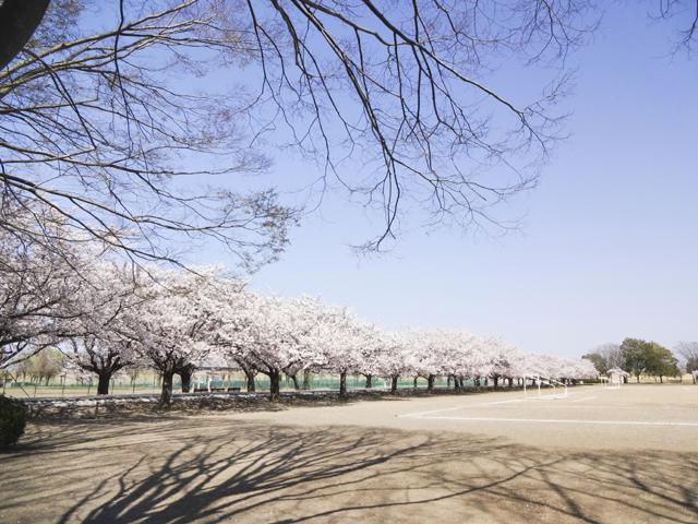 渡良瀬運動公園9