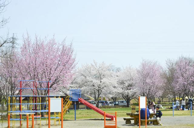 かじかの里公園3