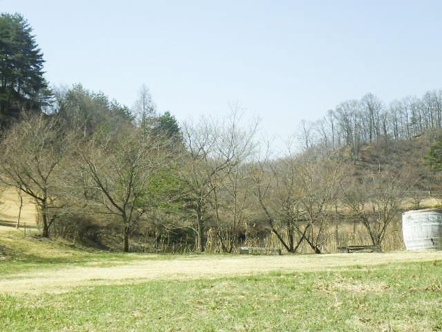 四賀村ビューティフルパーク(菅ノ田公園)2