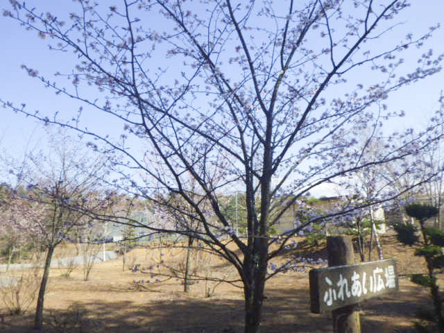 臼田町総合運動公園3