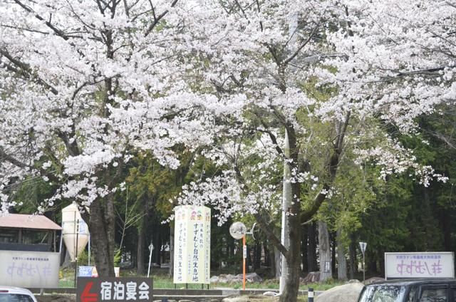 松川村温泉コミュニティー施設周辺1