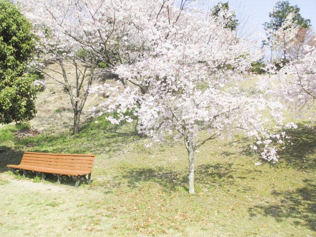 半布ヶ丘公園1