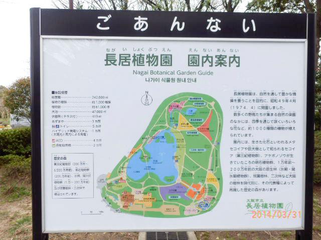 大阪市立 長居植物園11