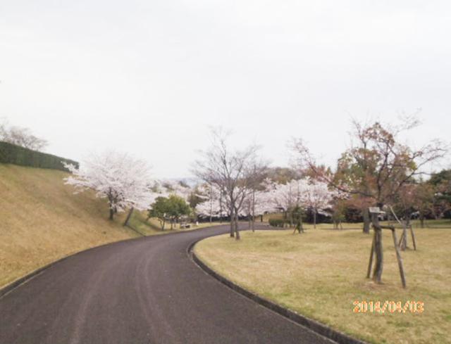 綾上町瀬戸内フラワーセンター周辺1