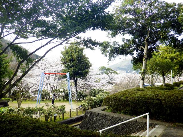 宇和運動公園4