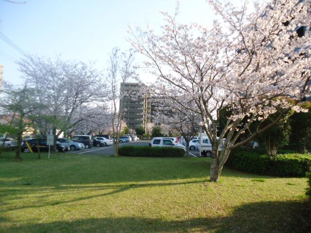 宮崎県農協会館1