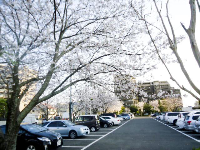 宮崎県農協会館2