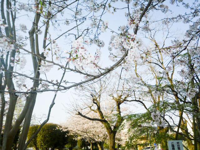 宮崎県農協会館9